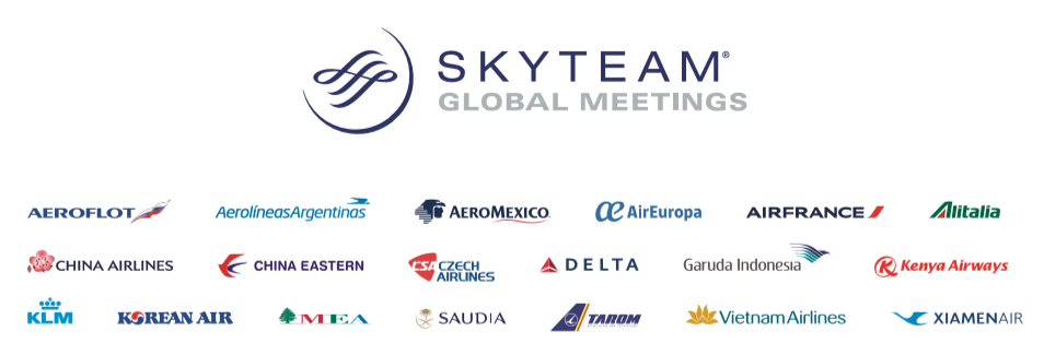 Skyteam Banner