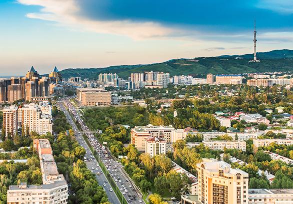 AGENT FOCUS ICEF Central Asia