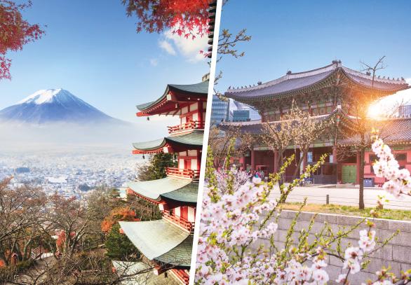 AGENT ROADSHOW ICEF Japan – Korea