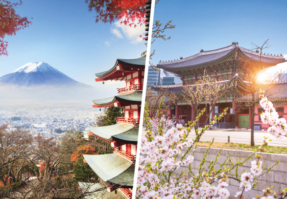 ORIGIN EVENT ICEF Japan – Korea